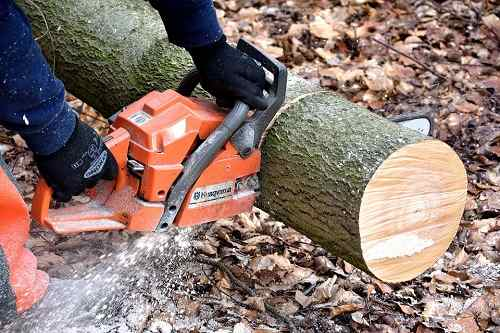 how much does tree removal typically cost vancouver tree services. Black Bedroom Furniture Sets. Home Design Ideas